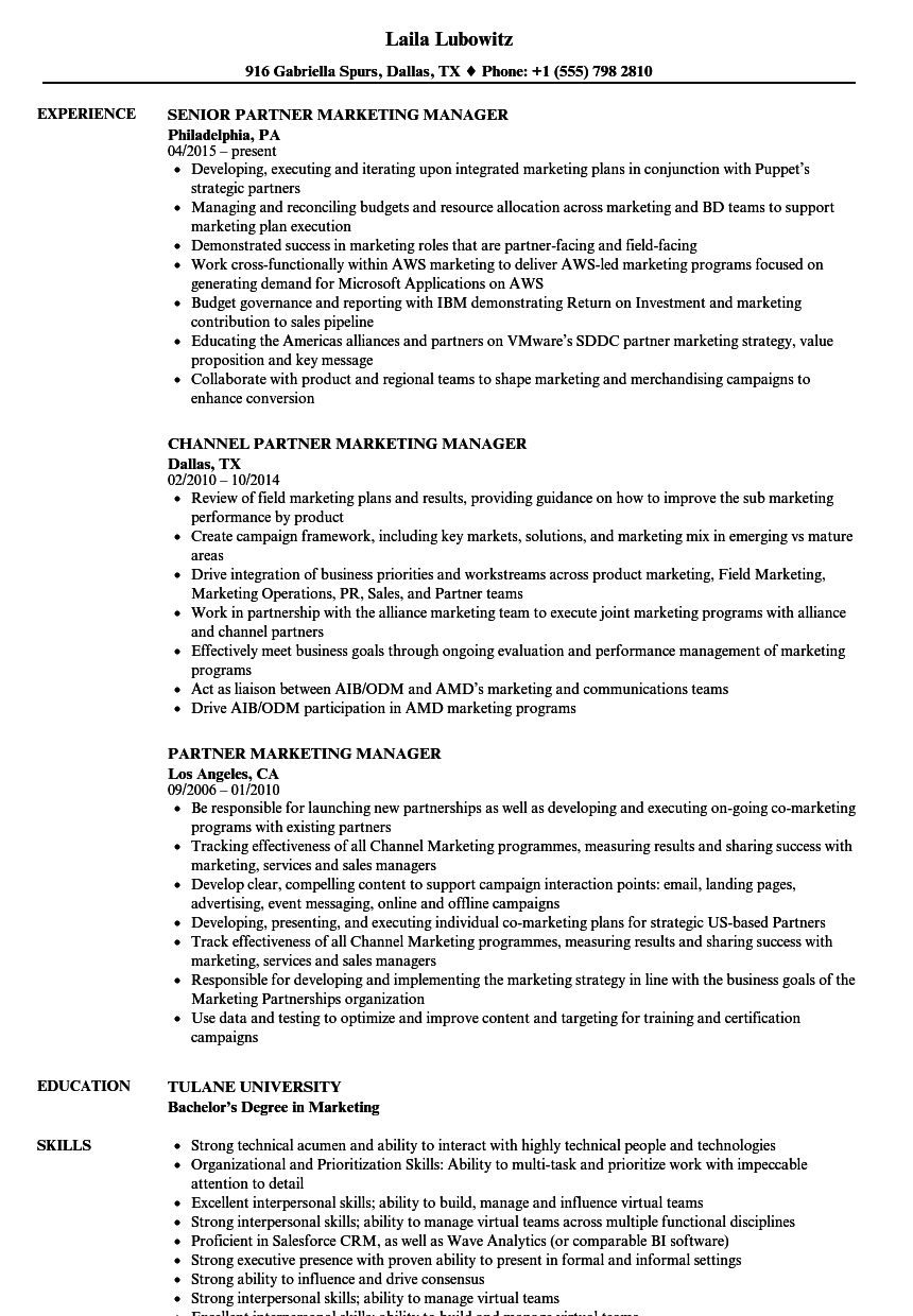 Partner Marketing Manager Resume Samples | Velvet Jobs