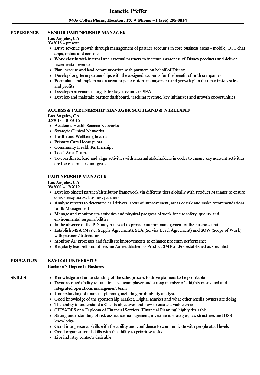 Partnership Manager Resume Samples | Velvet Jobs