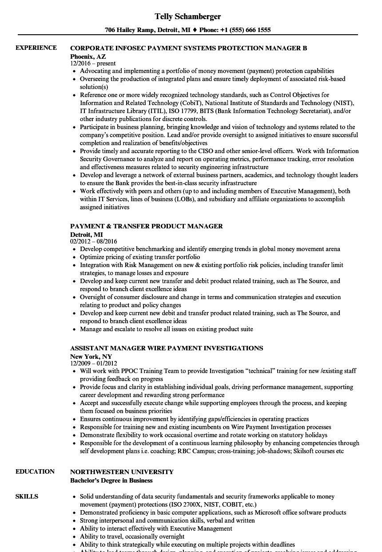 Payment Manager Resume Samples Velvet Jobs Data Security Job Description Download Sample As Image File