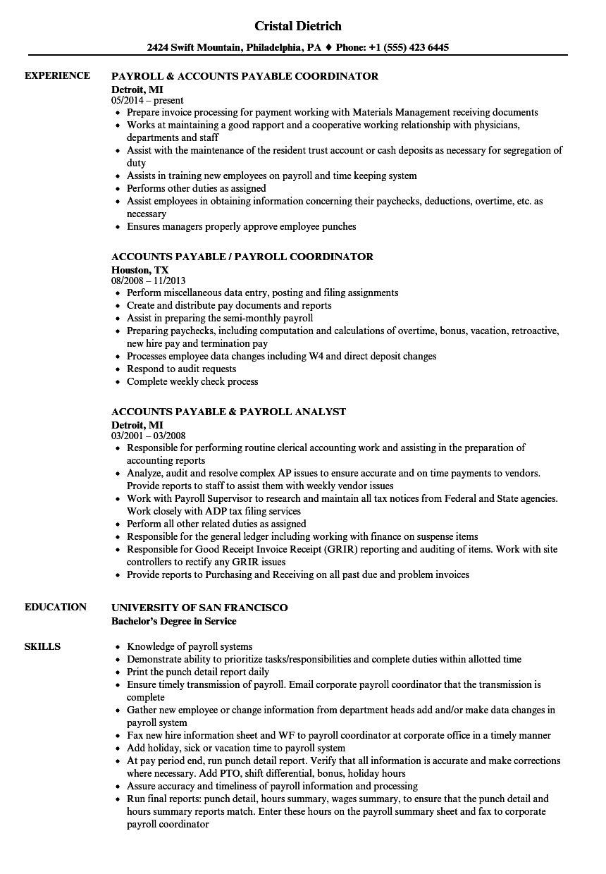 Payroll / Accounts Payable Resume Samples | Velvet Jobs