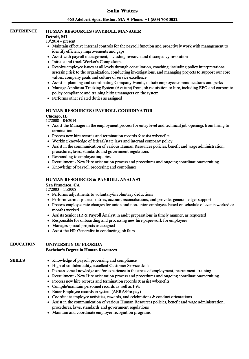 Download Payroll / Human Resources Resume Sample As Image File  Human Resources Resume Examples