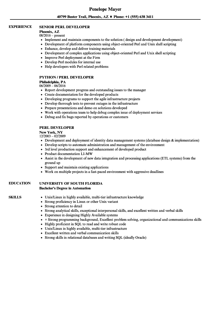 Perl Developer Resume Samples Velvet Jobs