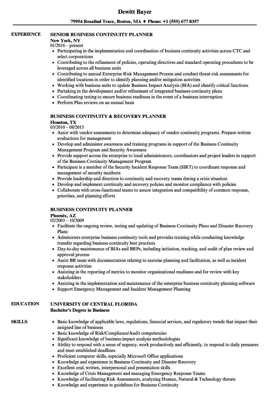 planner  business resume samples