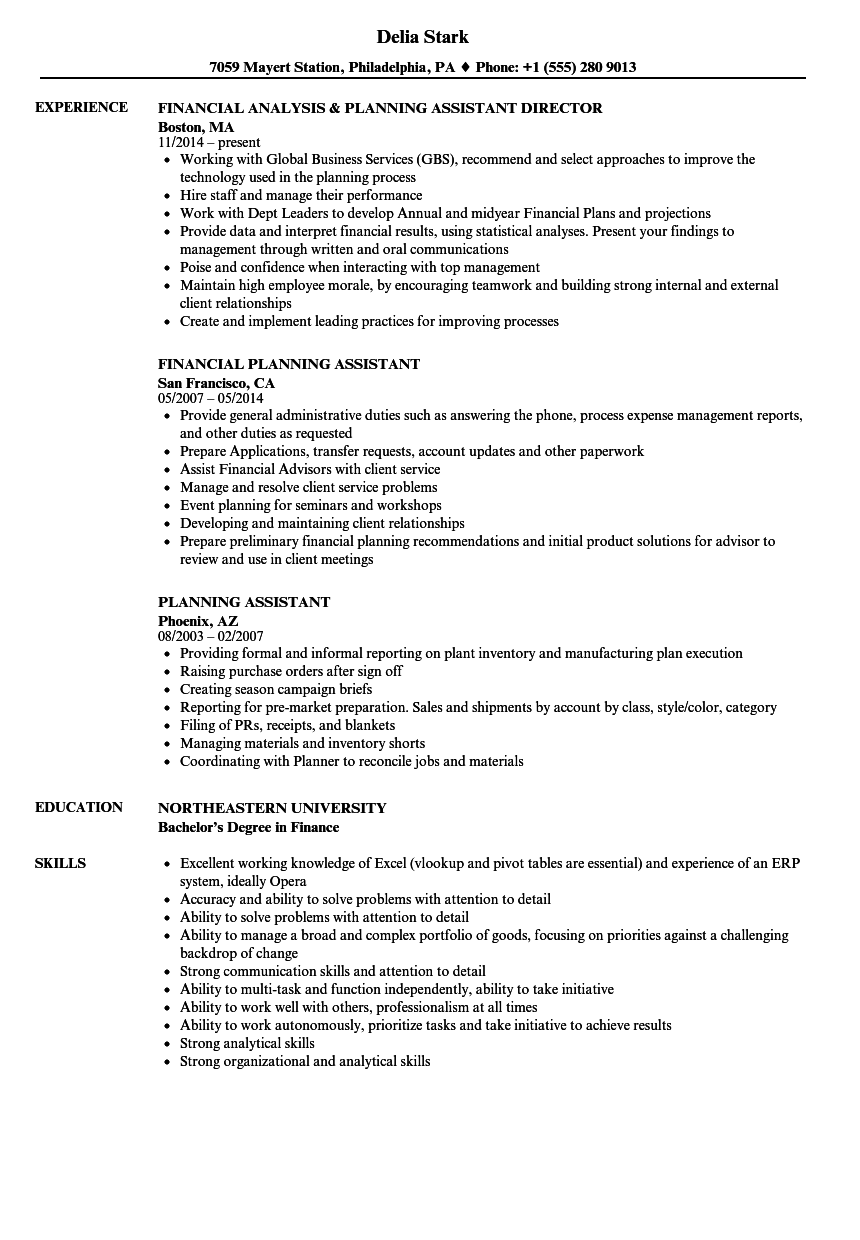 Download Planning Assistant Resume Sample As Image File  Financial Assistant Resume