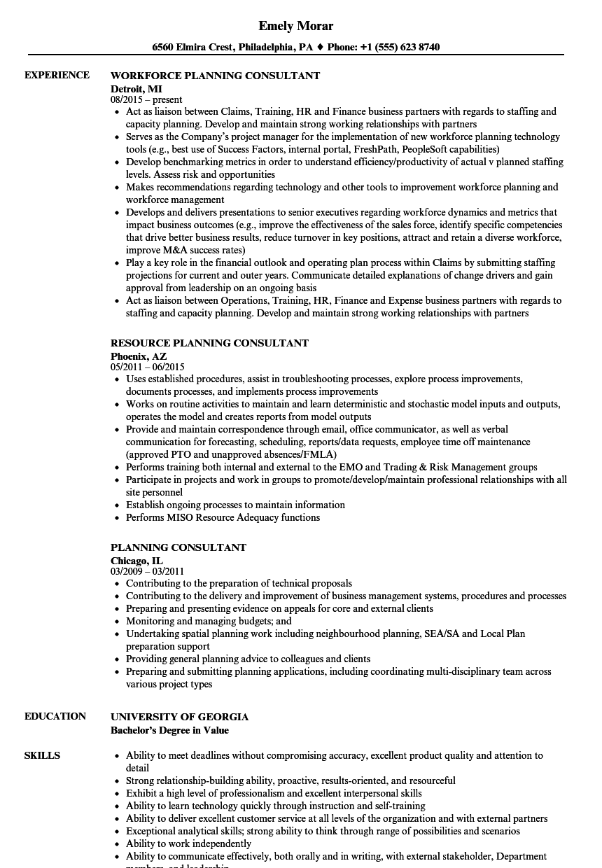 Download Planning Consultant Resume Sample As Image File