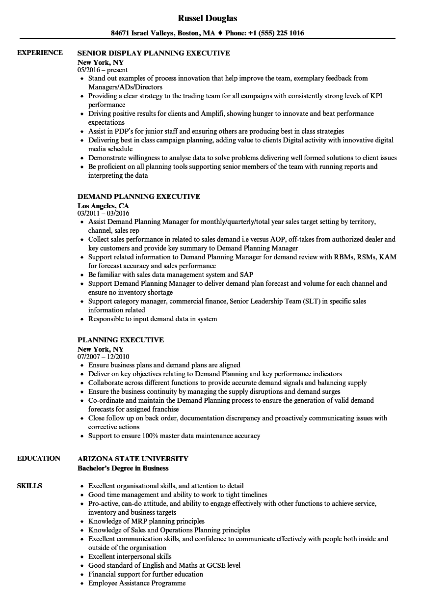 planning executive resume samples velvet jobs