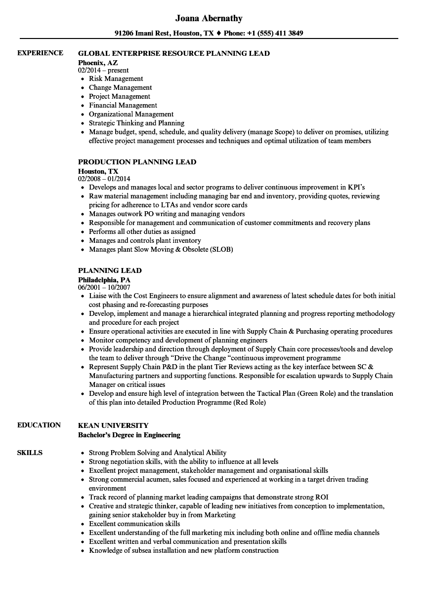 planning lead resume samples