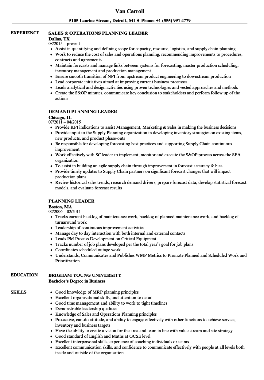 pmo resume sample - Pmo Resume Sample