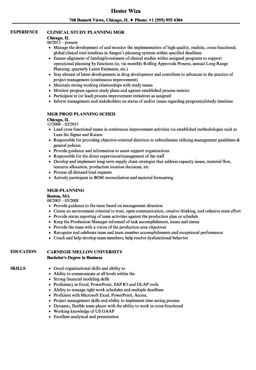 Detail oriented resume example