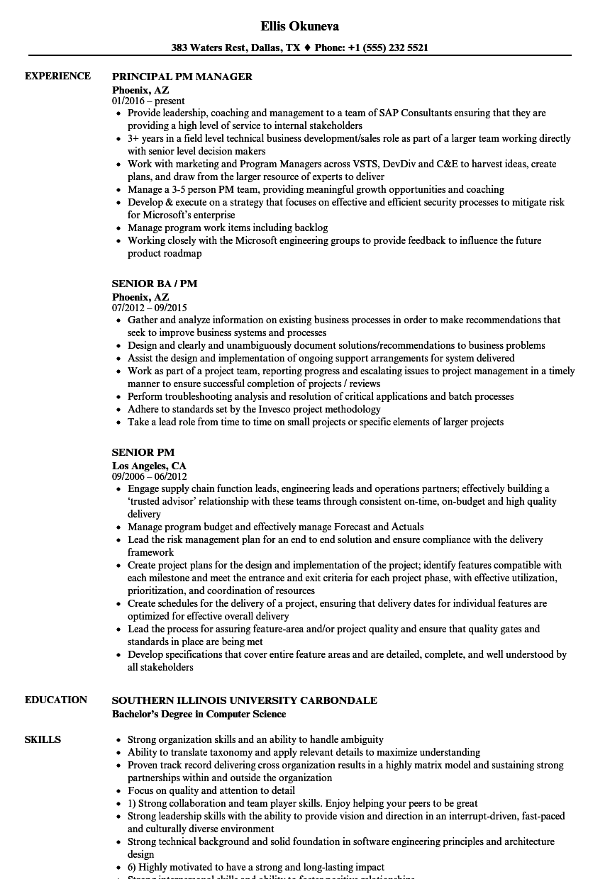 pm resume samples