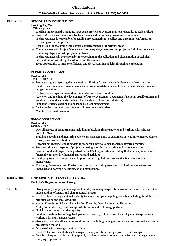 PMO Consultant Resume Samples | Velvet Jobs