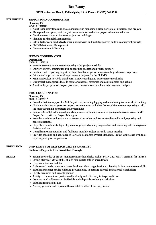 PMO Coordinator Resume Samples