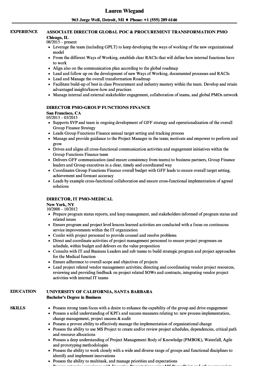 Marvelous Download PMO Director Resume Sample As Image File.  Pmo Director Resume