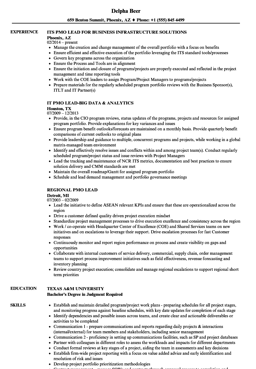 pmo lead resume samples