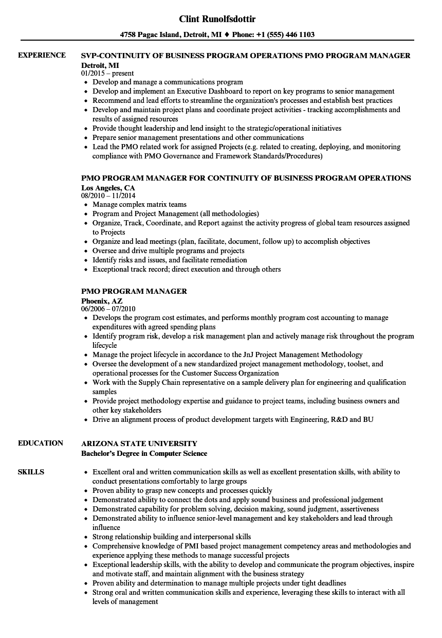 pmo program manager resume samples velvet jobs