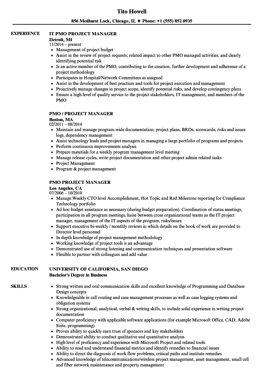 pmo project manager resume samples