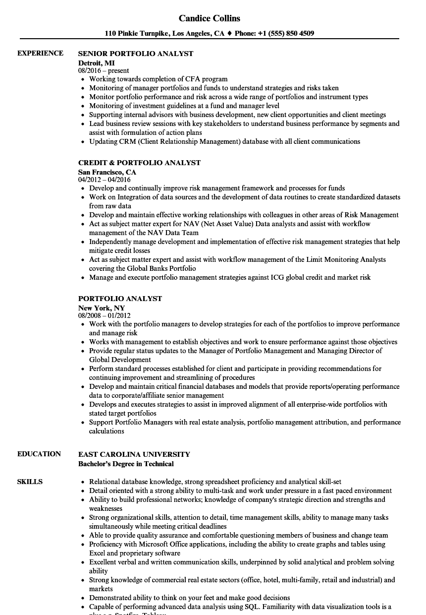 Resume Portfolio | Portfolio Analyst Resume Samples Velvet Jobs
