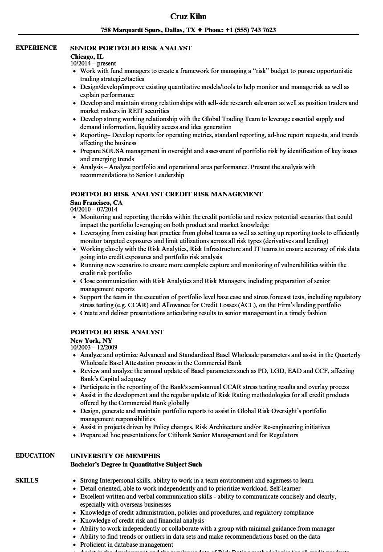 Download Portfolio Risk Analyst Resume Sample As Image File