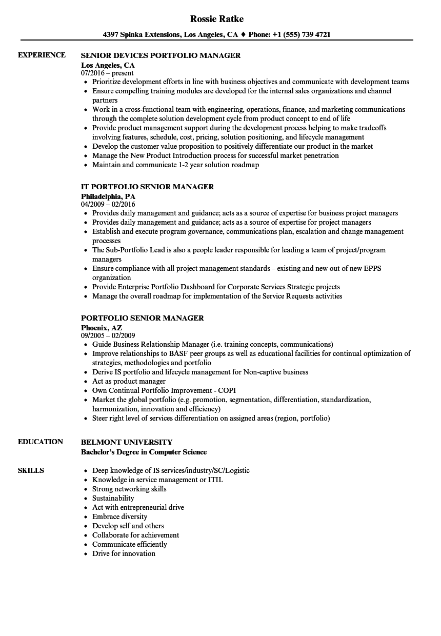portfolio senior manager resume samples
