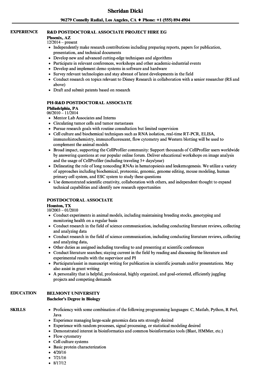 postdoctoral associate resume samples