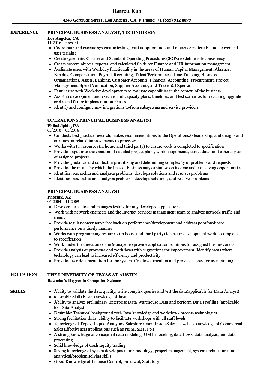 Principal Business Analyst Resume Samples Velvet Jobs