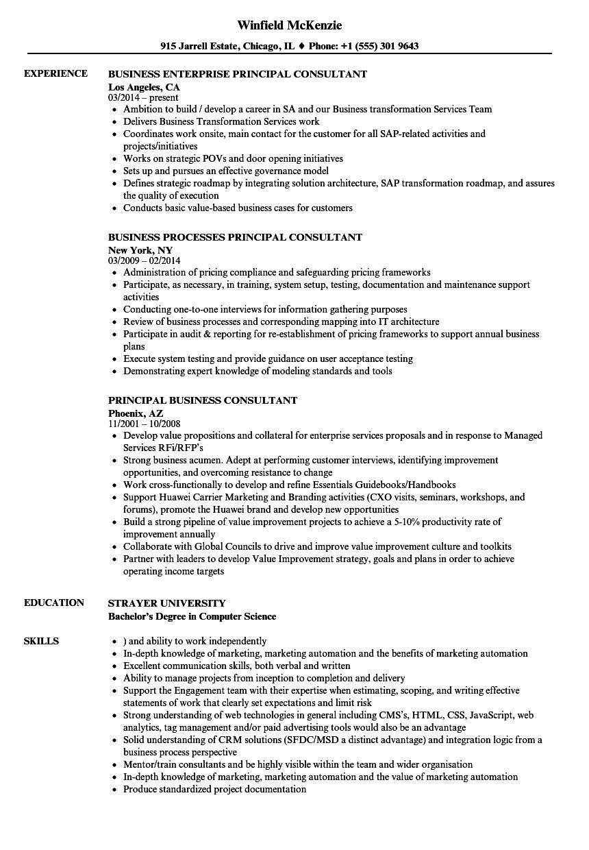 Principal Business Consultant Resume Samples | Velvet Jobs