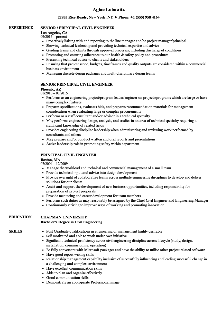 principal civil engineer resume samples
