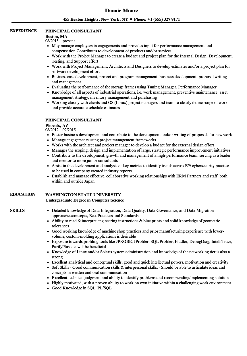 Principal Consultant Resume Samples Velvet Jobs