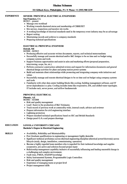Download Principal Electrical Resume Sample As Image File