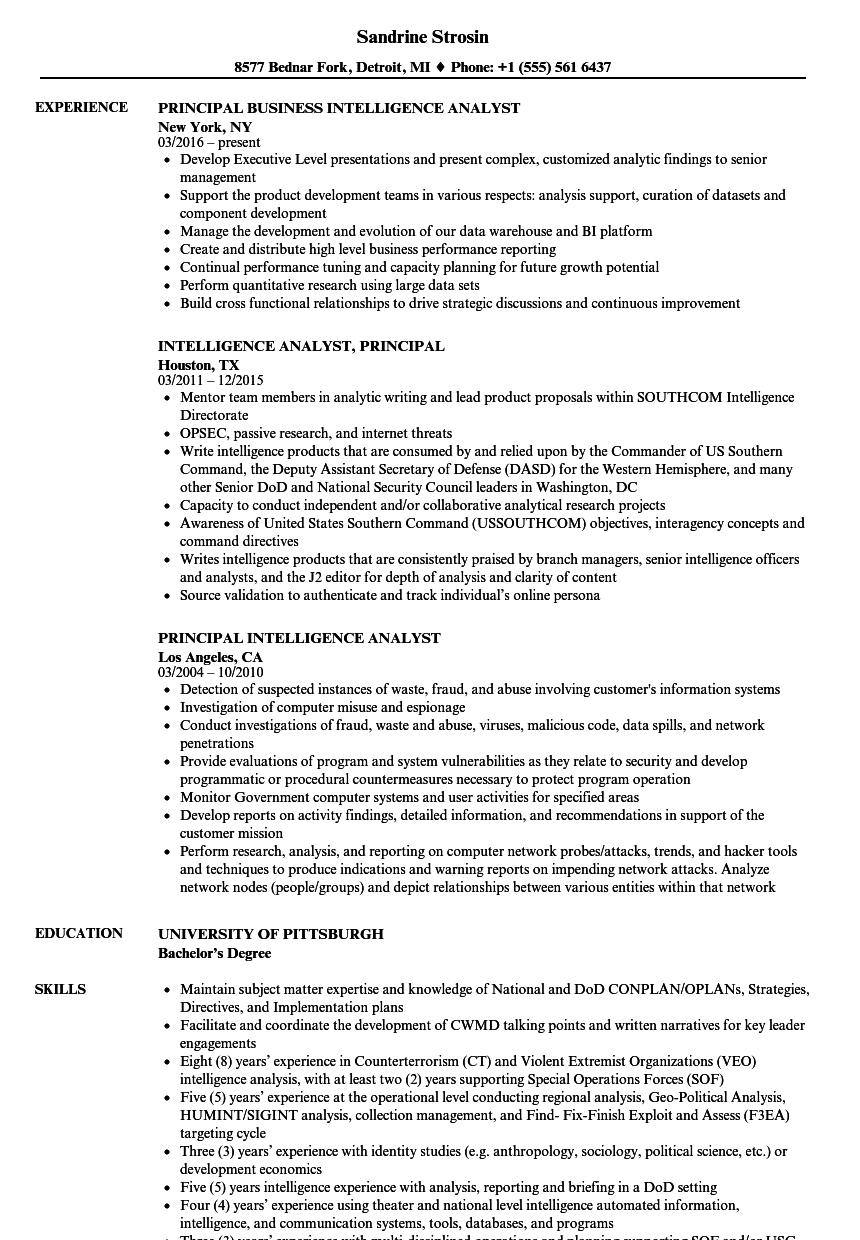 download principal intelligence analyst resume sample as image file - Business Intelligence Analyst Resume
