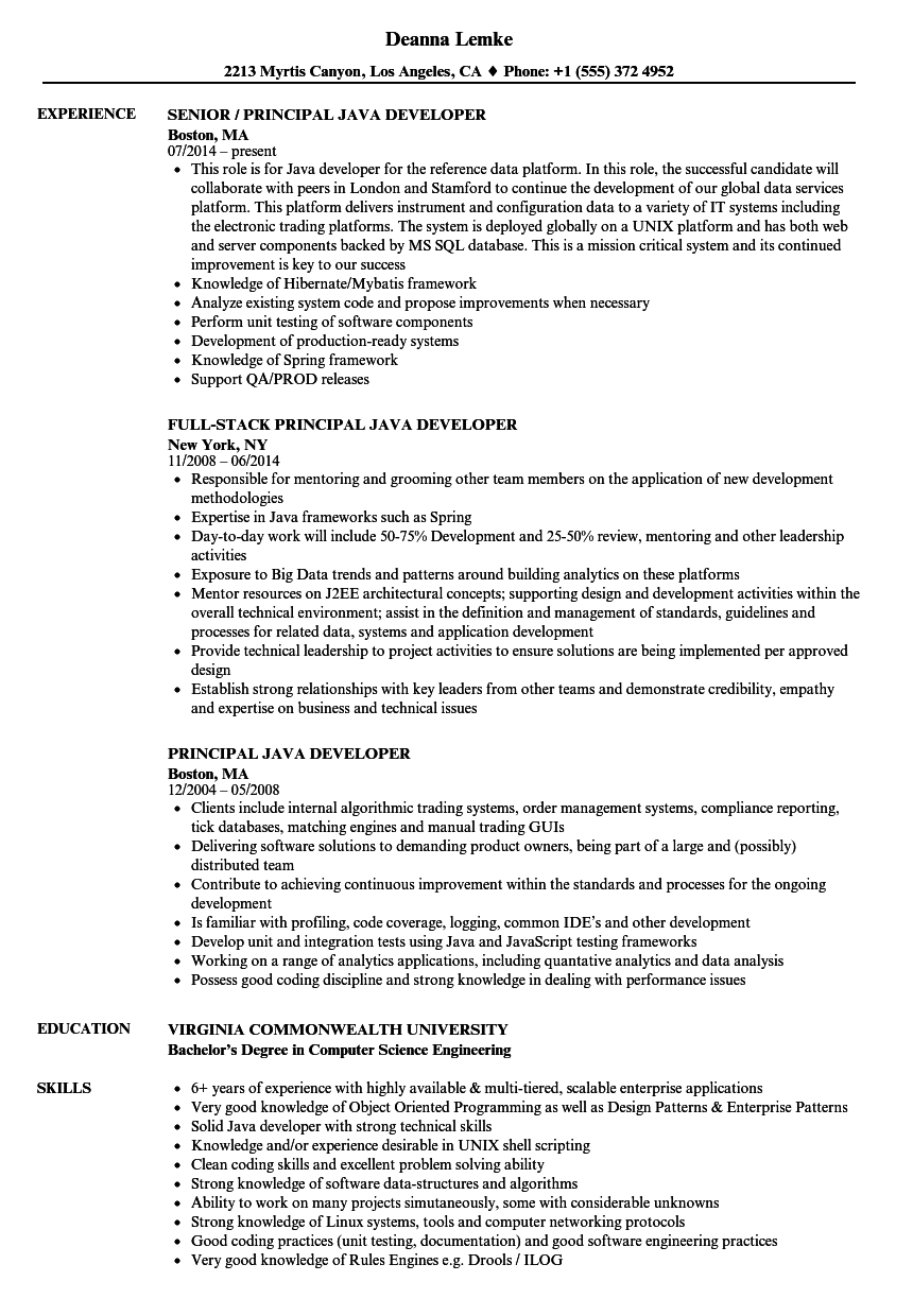 Principal Java Developer Resume Samples | Velvet Jobs