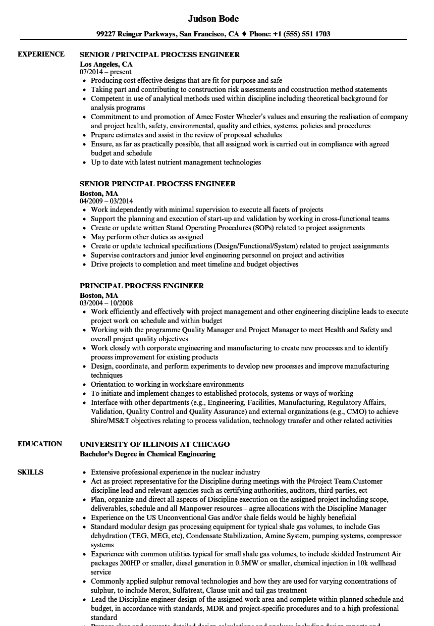 principal process engineer resume samples