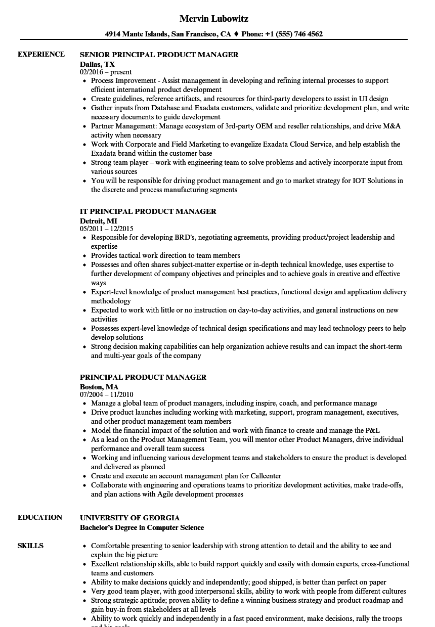 Principal Product Manager Resume Samples Velvet Jobs