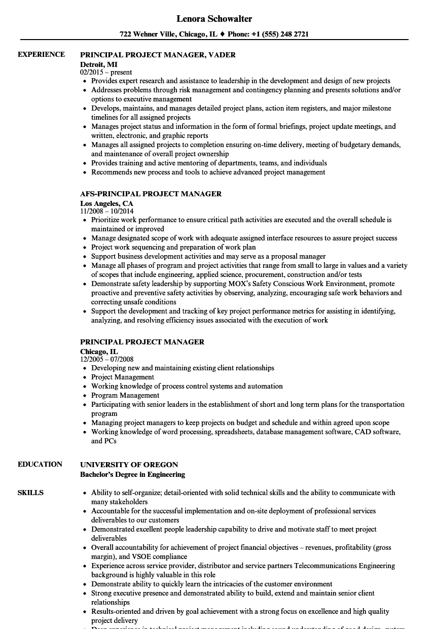 Principal Project Manager Resume Samples Velvet Jobs