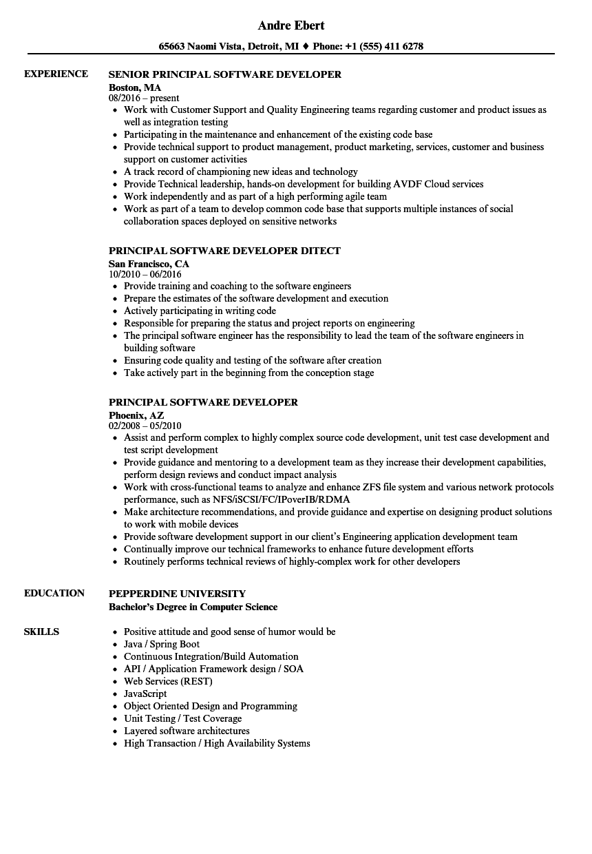 principal software developer resume samples