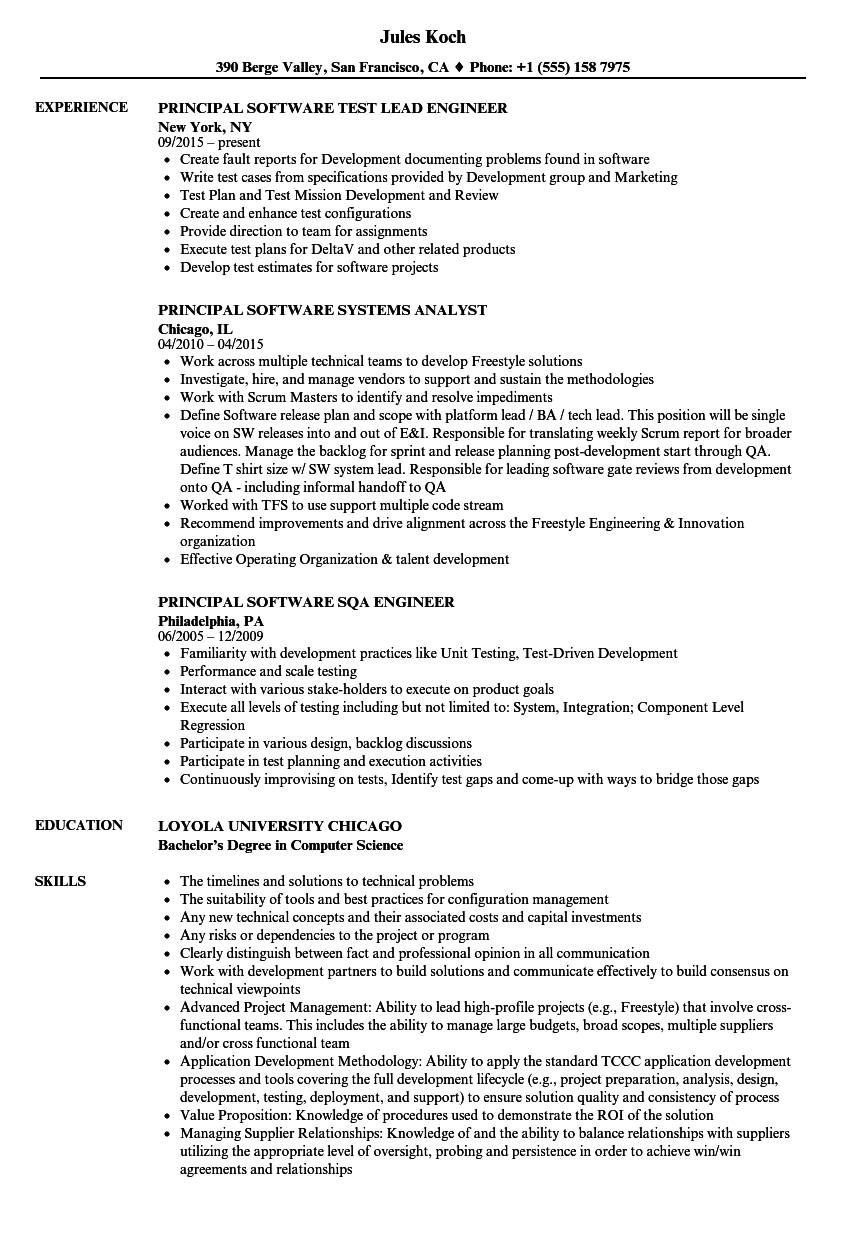 principal software resume sles velvet