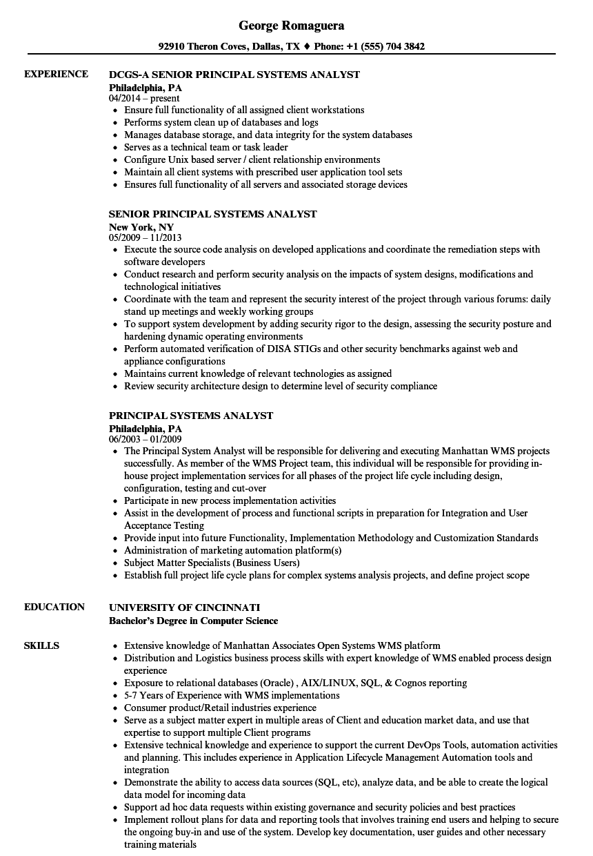 download principal systems analyst resume sample as image file - System Analyst Sample Resume