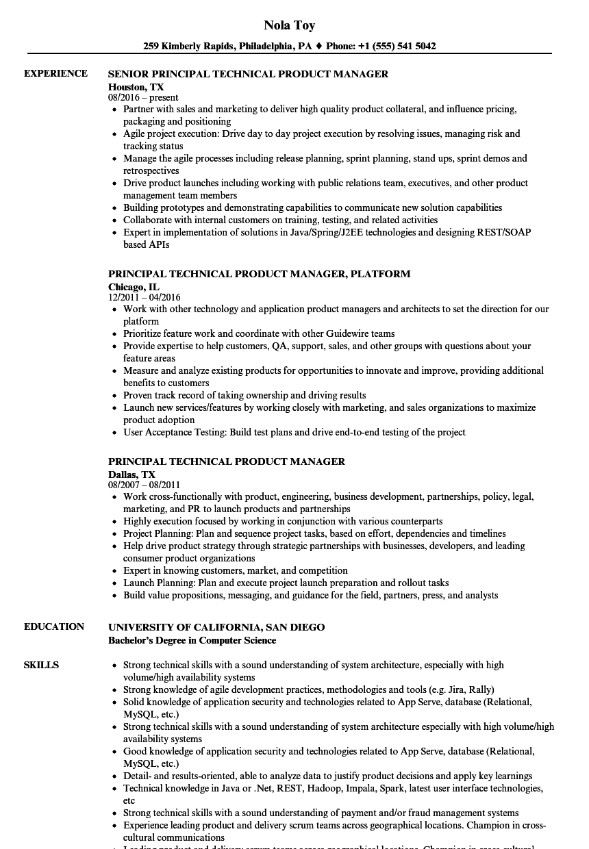 Download Principal Technical Product Manager Resume Sample as Image file