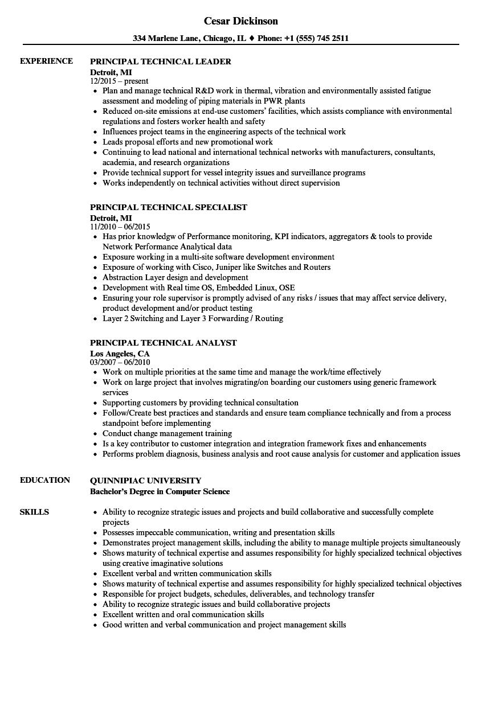 Principal Technical Resume Samples Velvet Jobs