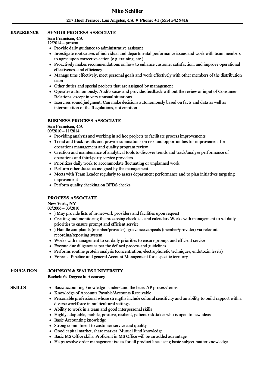 Process Associate Resume Samples | Velvet Jobs