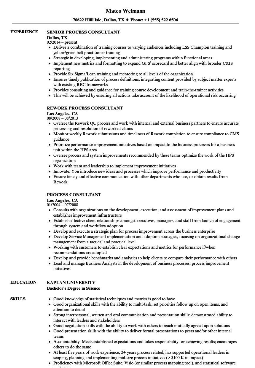 process consultant resume samples
