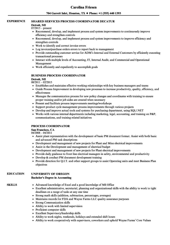 process coordinator resume samples