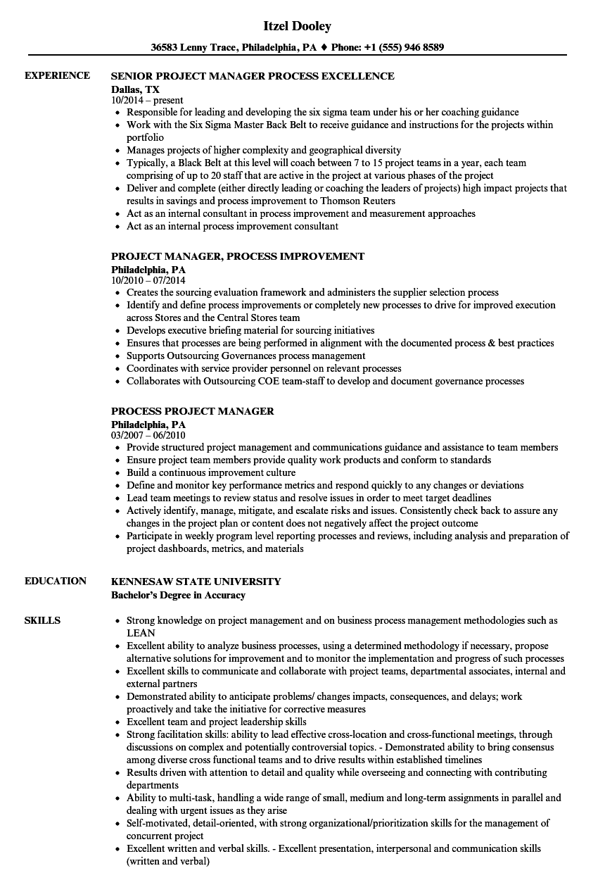 download process project manager resume sample as image file - Resume Samples Project Manager
