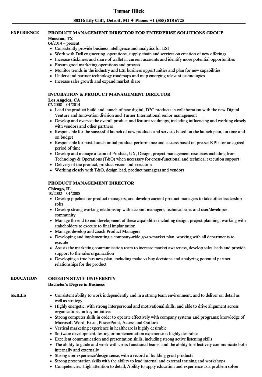 Download Product Management Director Resume Sample As Image File  Managing Director Resume