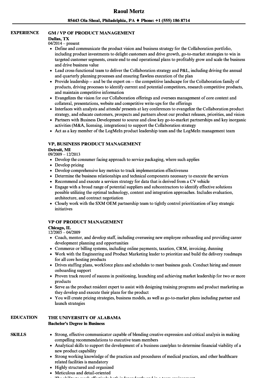 product management vp resume samples