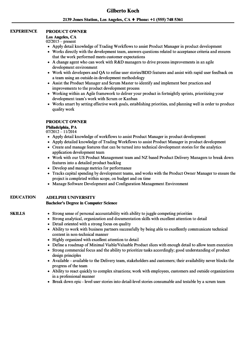 download product owner resume sample as image file - Product Owner Resume