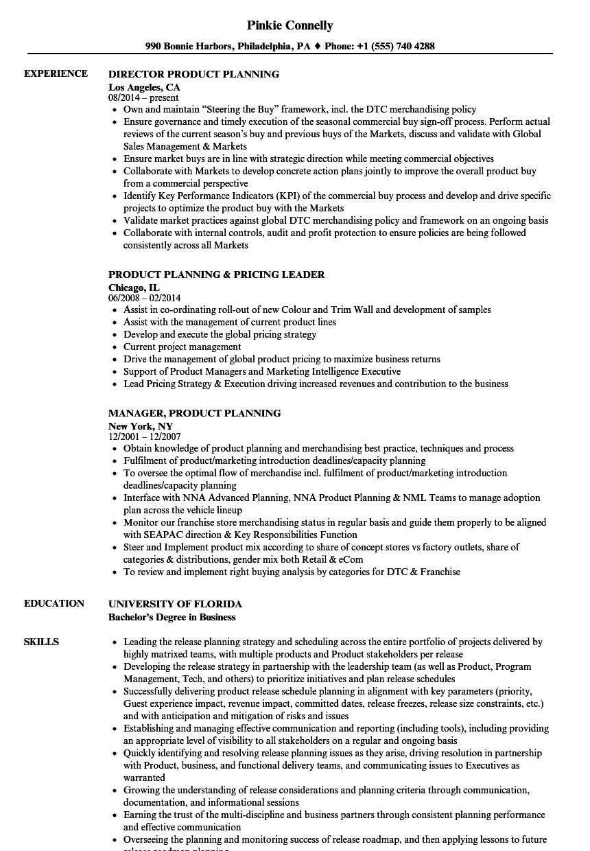 planner resume example of a resume letter for a job