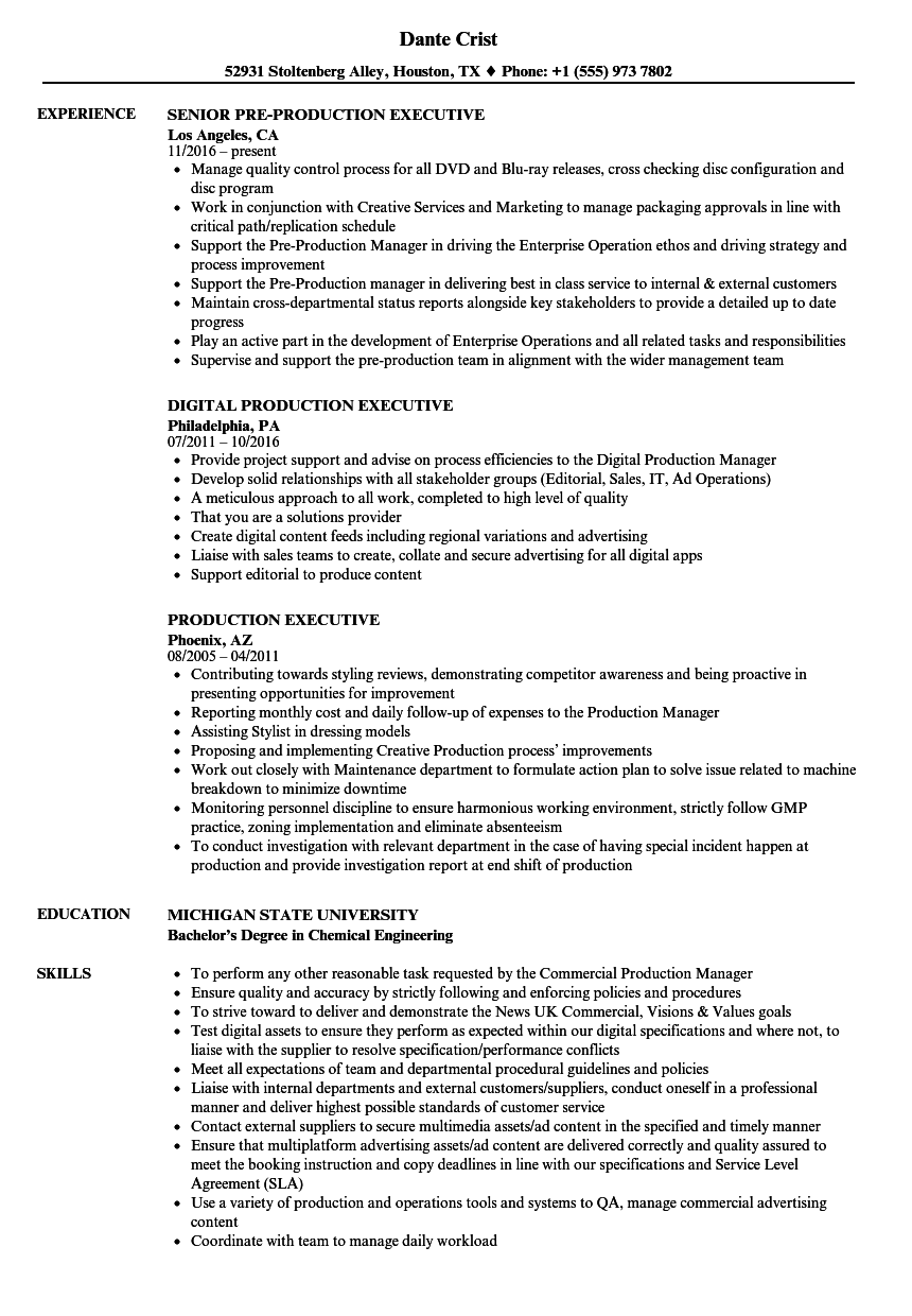 Production Executive Resume Samples | Velvet Jobs