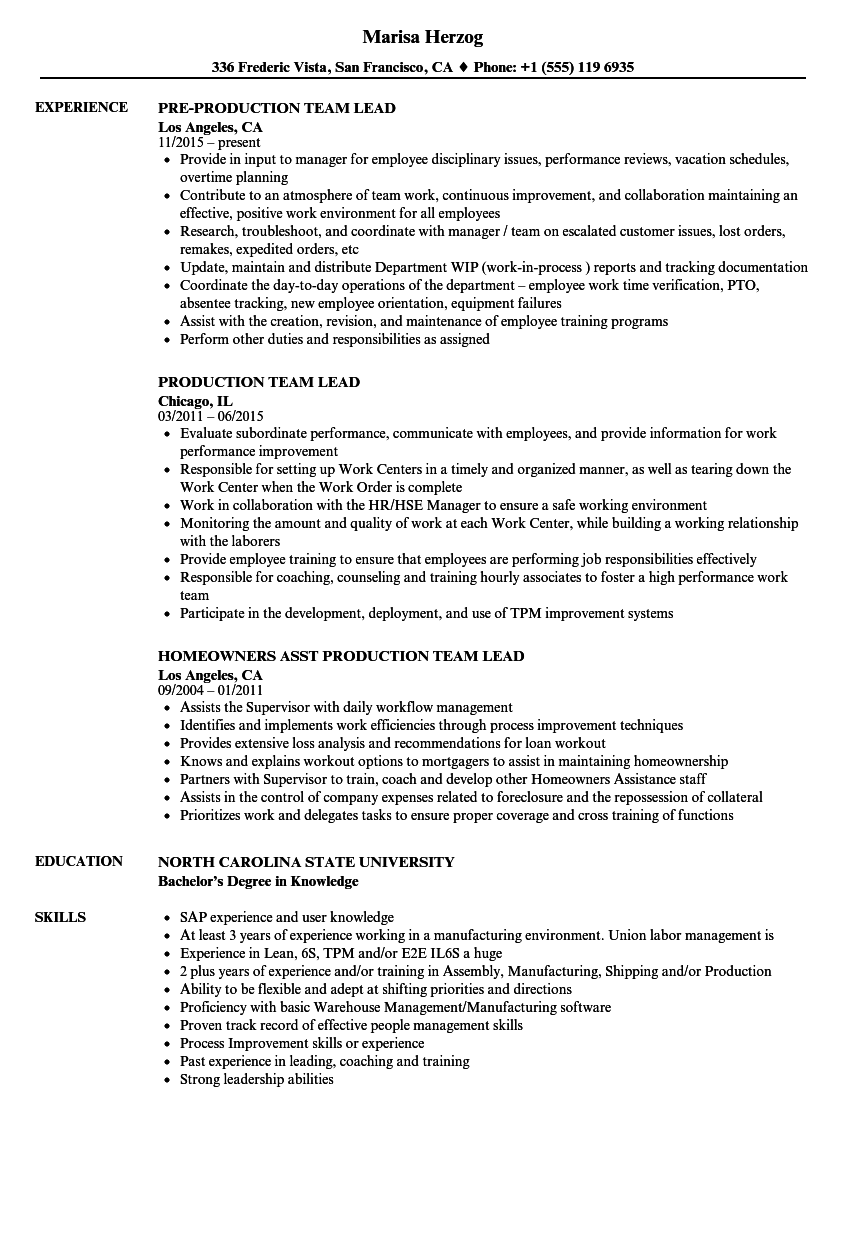 production team lead resume samples