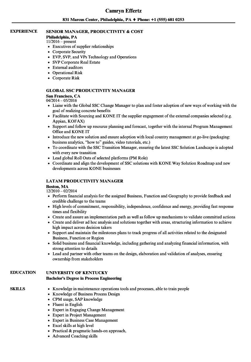 Productivity Manager Resume Samples